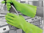 Picture of PURA GREEN GLOVE MED 375